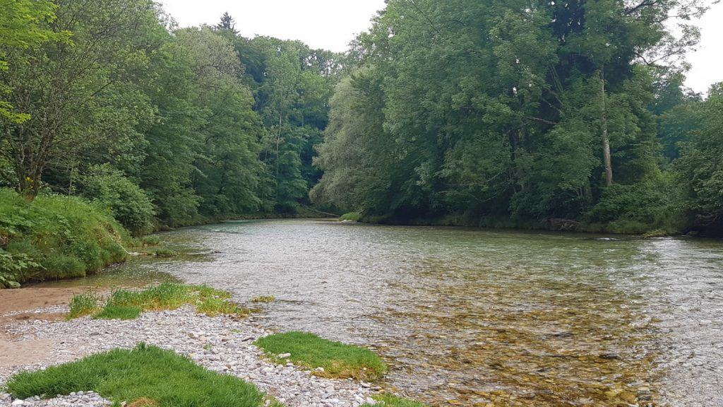 Picture of the river Traun
