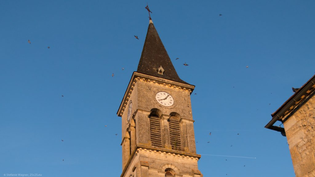 Old church tower in the sunset against blue sky with birds flying all around it.