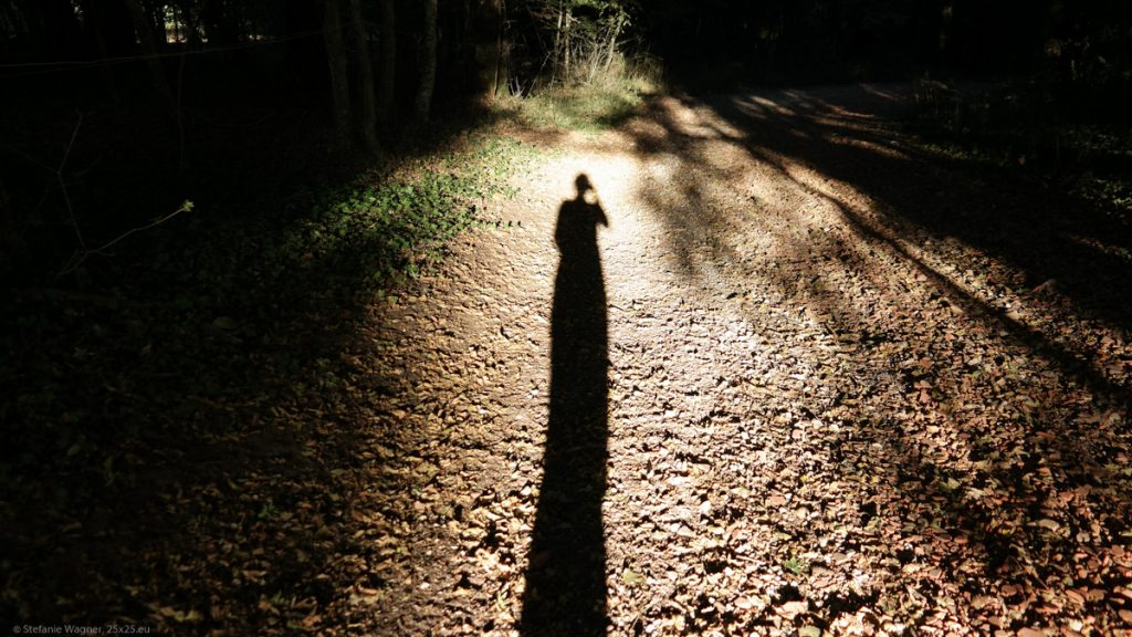 Shade of me on the ground of a path.