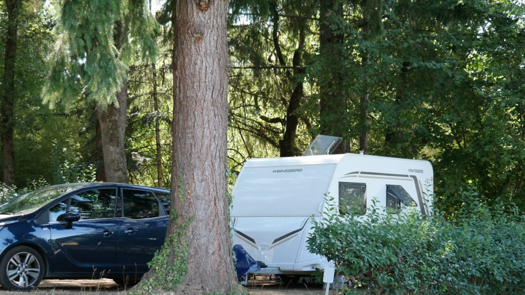 Trailer under trees