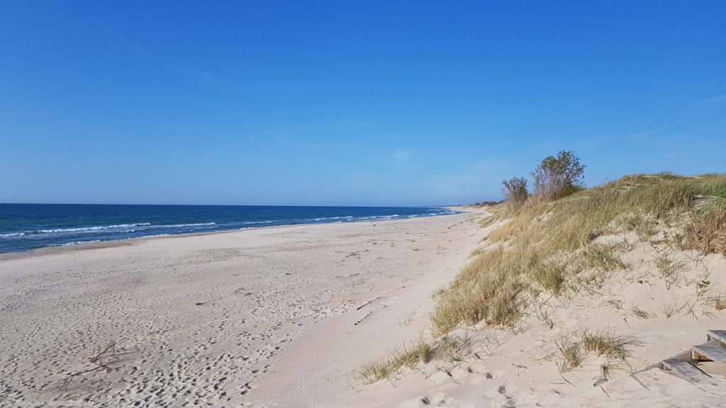 View along one of the beaches