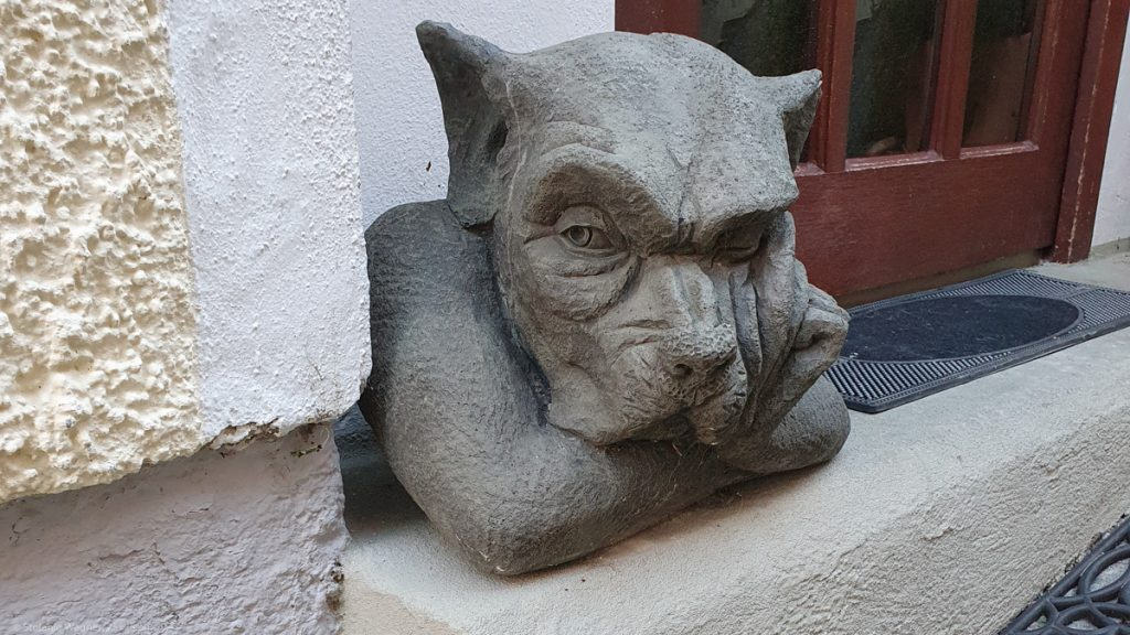 This image has an empty alt attribute; its file name is burghausen-hund-1024x576.jpg