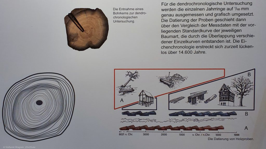 Information board about Dendrochronolgy in the museum