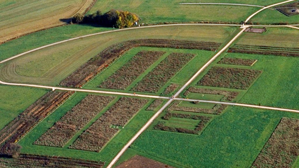 Aerial image, two paths that cross in the middle, around those a rectangle area of bushes and some rectangle shapes and wall-like shapes with higher grass