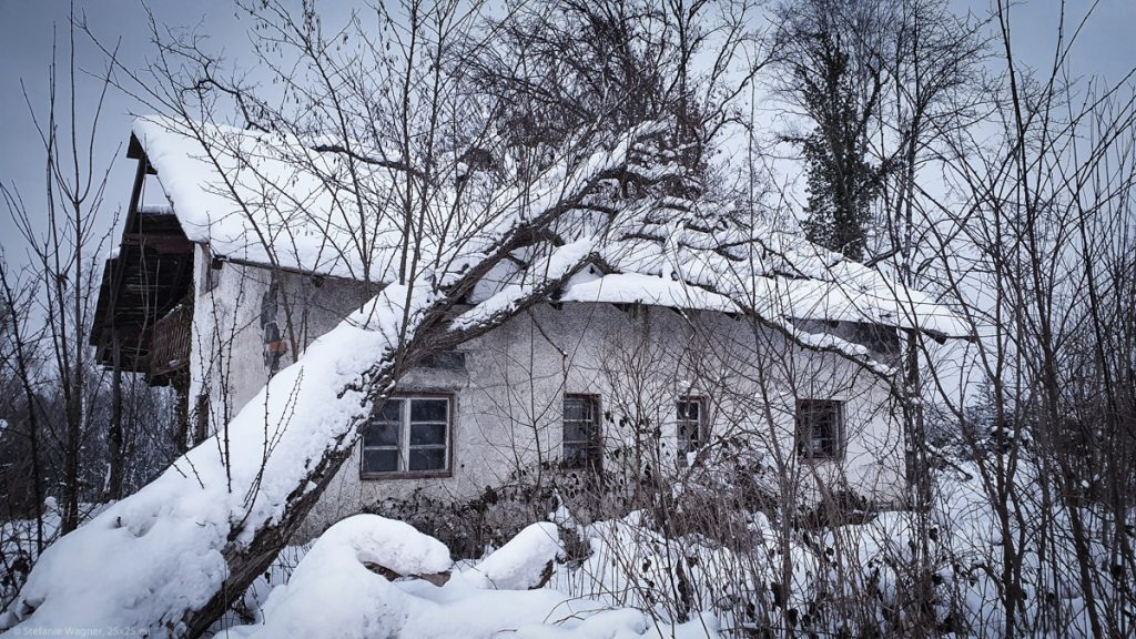 Old house with a fallen tree lying on its roof