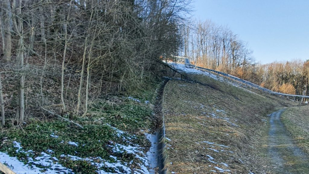 The lane of the slide covered with leaves and a fallen tree