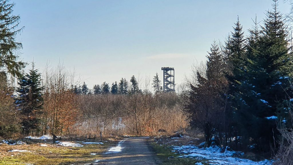 Path towards trees (without leaves), in the background a high tower with stairs