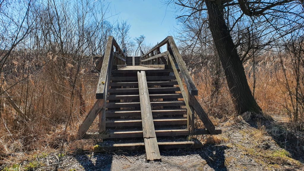 Wooden stairs towards a small bridge, one small plank in the middle leading up